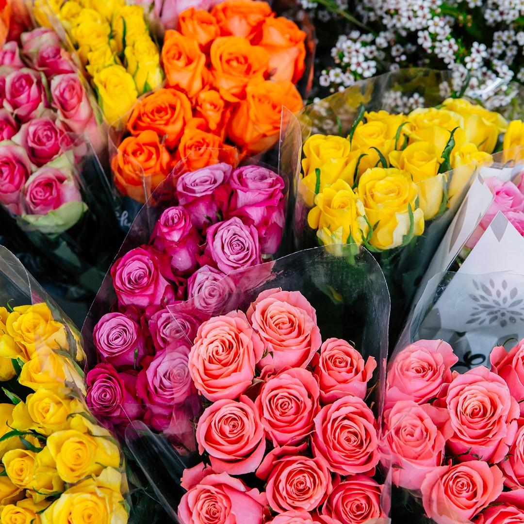0120 MarinaMirage RomanceTiles 1080x1080px Florist 1