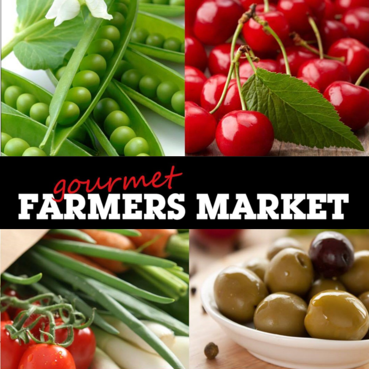 Farmers markets logo 1200x1200