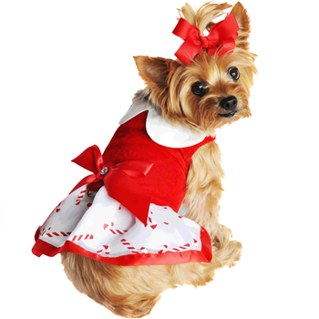 holiday dog harness dress candy canes 2783